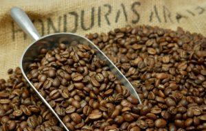 Coffee toast lightly freshly toasted